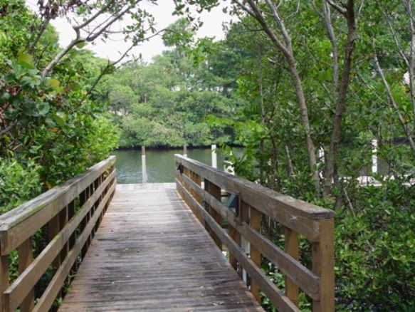 River Walkway Along The Inter-Coastal Island